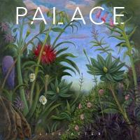 "Palace Release New Sublime Second Album ""Life After"" via Fiction..."